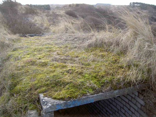 Covered-trenches