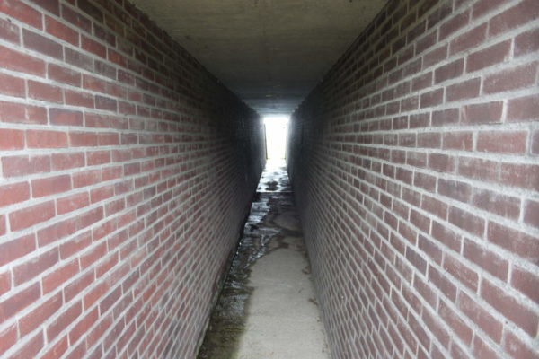 (Covered)-trenches
